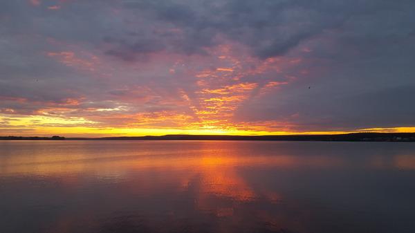 Классный прекрасный закат над прудом. Алое небо